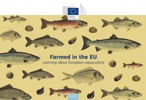 EU_Fisch_Projekt_Bild1